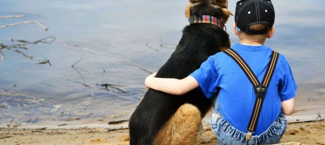 Собаки могут уменьшить стресс у детей с аутизмом